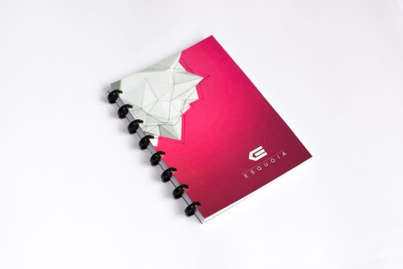 Reusable notebook A5 ESQUOIA Pink