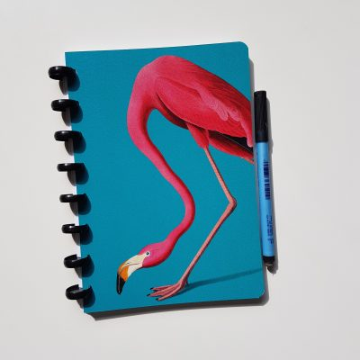 Flamingo whiteboard Notebook Esquoia A5
